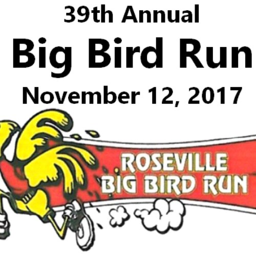 39th Annual Big Bird Run